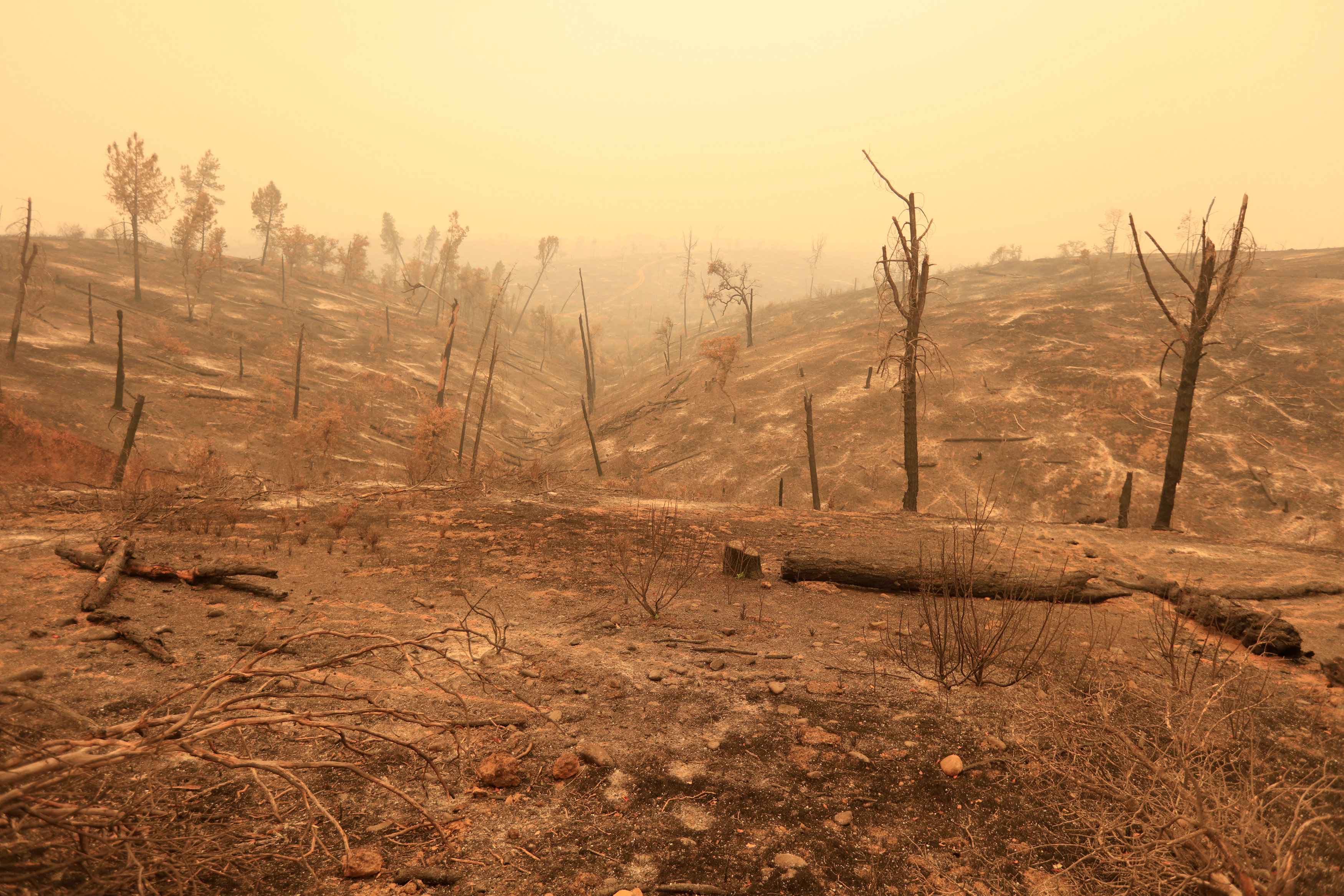 Scarred hills remain after the Carr Fire west of Redding