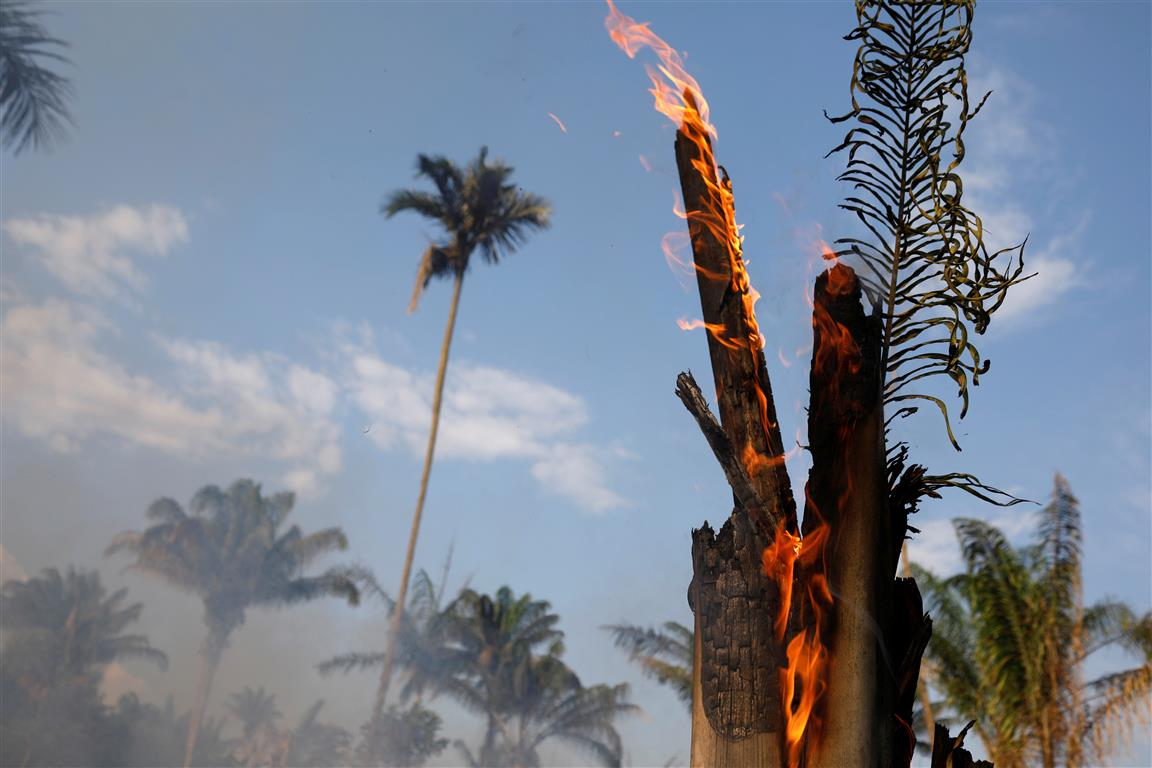 A tract of Amazon jungle burning as it is being cleared by loggers and farmers in Iranduba,...