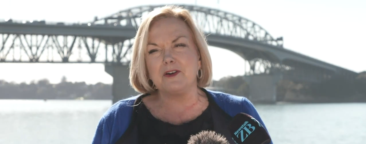 National Party leader Judith Collins. Image: RNZ