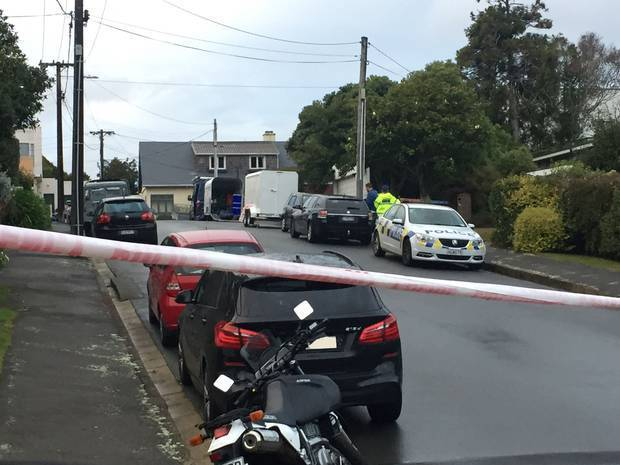 The attack happened on Lemnos Ave, in Karori. Photo: NZ Herald