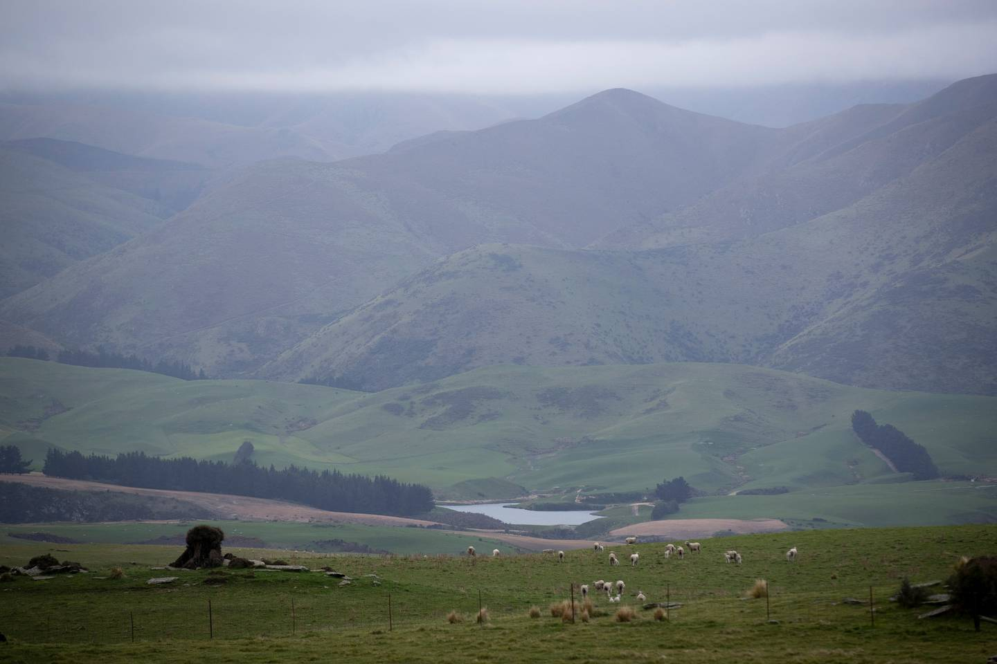 The water reservoir near Dunback in Otago where mother Nadine Tomlinson and her son Angus were...