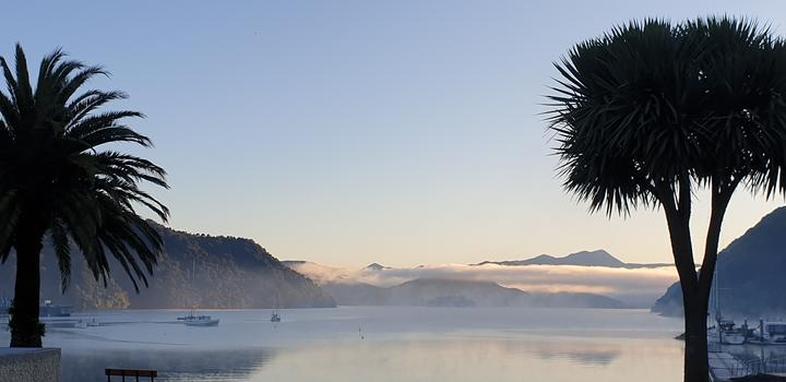 Picton's foreshore. Photo: RNZ / Tracy Neal
