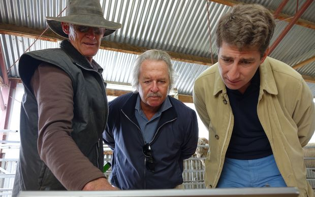 Alistair Campbell, left, demonstrating computer technology that has helped breed Merino sheep....