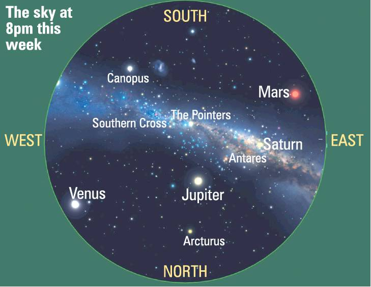 Hold this chart above your head to spot the four planets overhead this week.