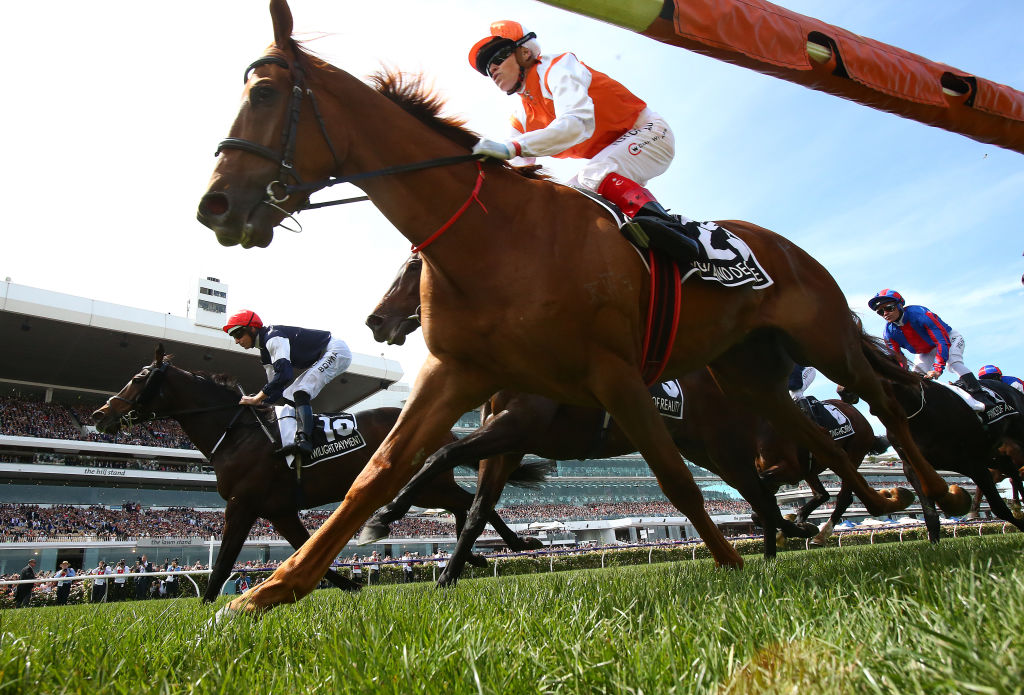 Craig Williams rides Vow And Declare to victory in the Melbourne Cup. Photo: Getty Images