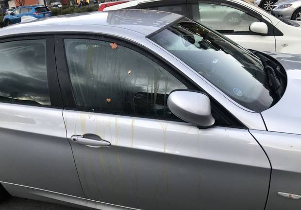 The aftermath of a random egg attack in Kelston on Sunday. Photo: Supplied