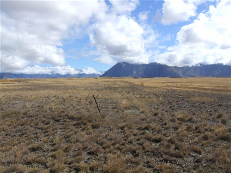 Land earmarked for irrigation and dairy development at Ohau Downs near Omarama. Photo: ODT files