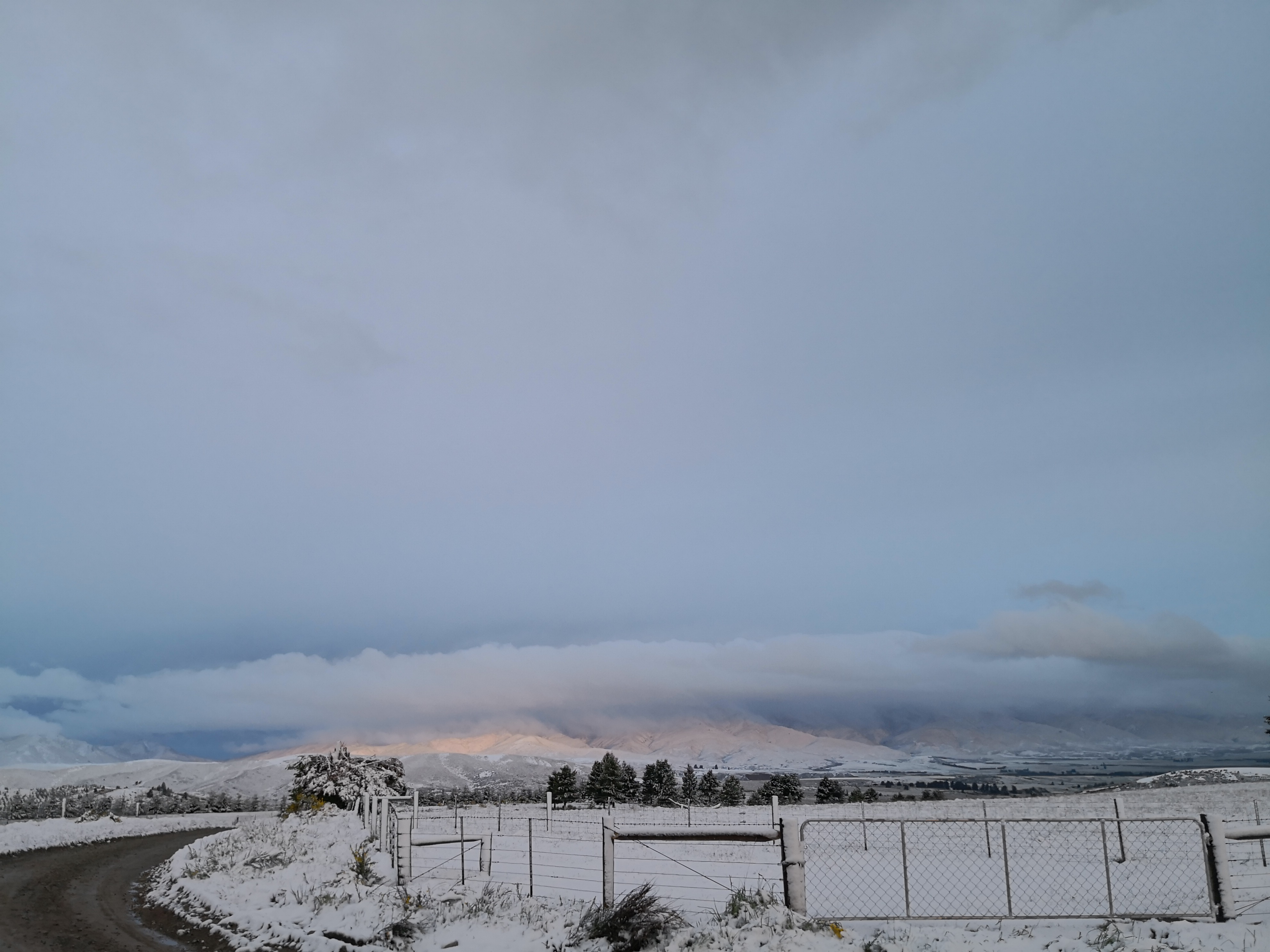 The Naseby area was blanketed in snow yesterday. Photo: Craig Sherson