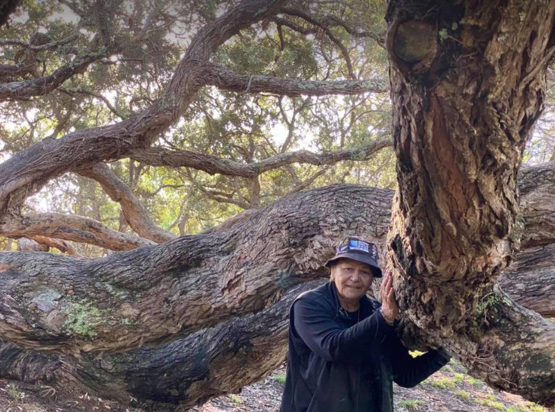 Dame Naida Glavish with 180-year-old Pōhutakawa tree at Mataharehare. Photo: Supplied via NZH