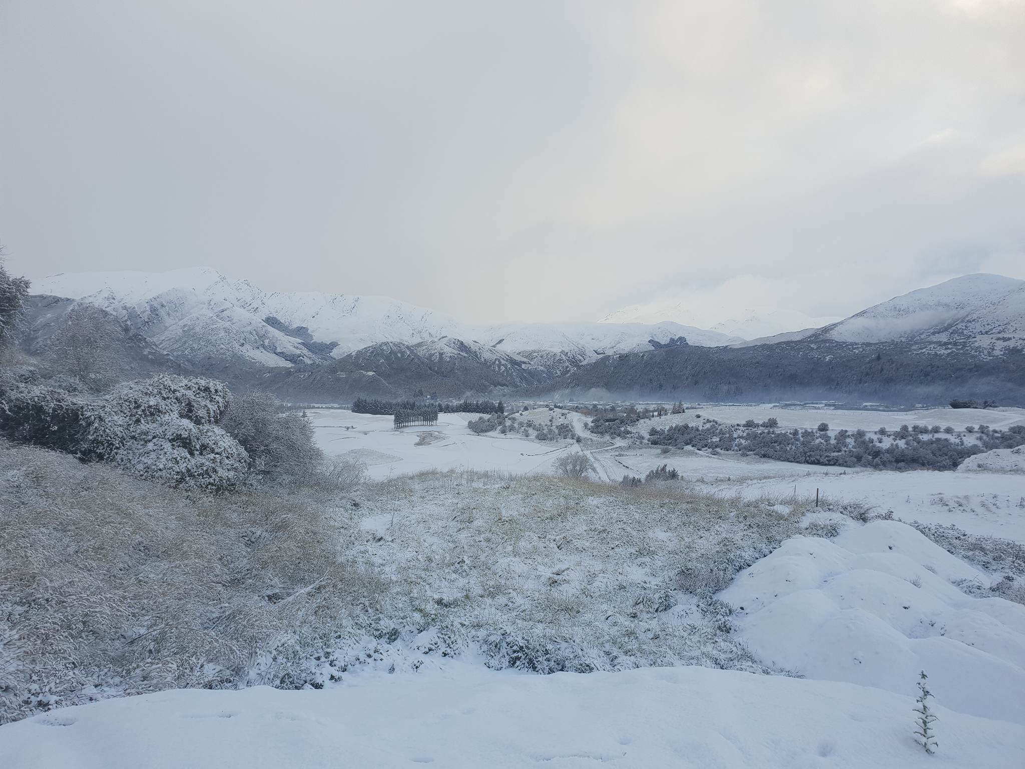 Snow in the Arrowtown area this morning. Photo: James Rolfe