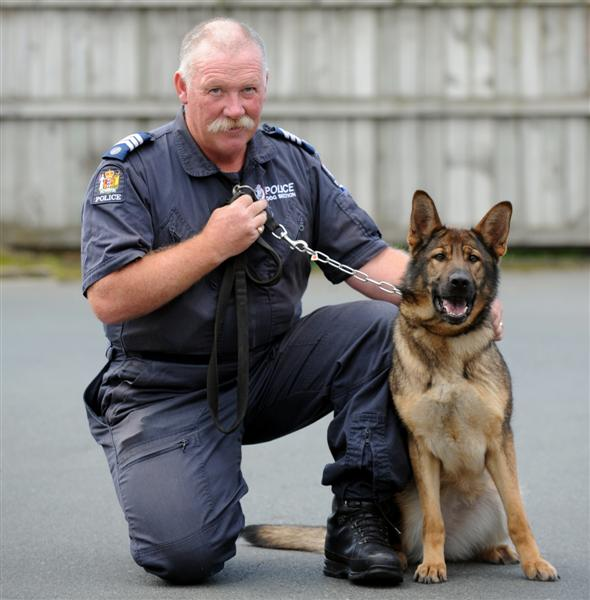the role and importance of canines in the police force An introduction to the importance of canines of the police force: police dogs pages 8 words 3,941 view full essay more essays like this: police dogs, importance of police dogs, importance of police canines not sure what i'd do without @kibin - alfredo alvarez, student @ miami university.