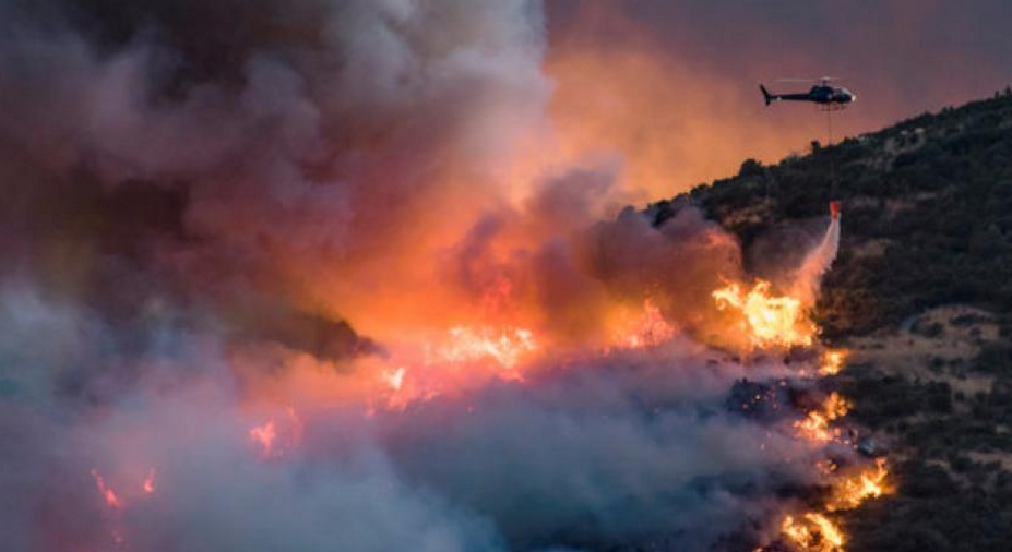 The Port Hills fires are now being investigated a a crime. Photo: Reuters