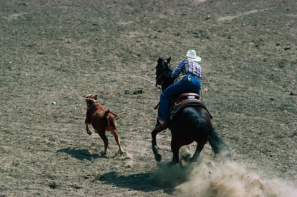 A major supporter has withdrawn from its involvement in rodeos. Photo Getty