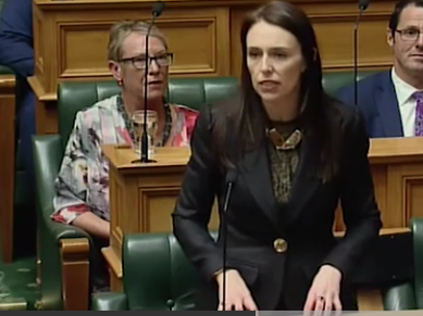New Zealand's 52nd Parliament has opened and MPs have been sworn in, with Prime Minister Jacinda...