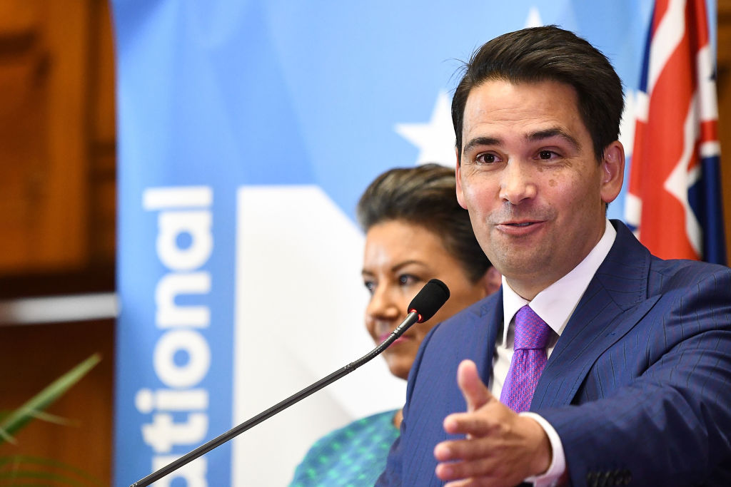 Simon Bridges addresses the media at Parliament after being elected National Party leader today....