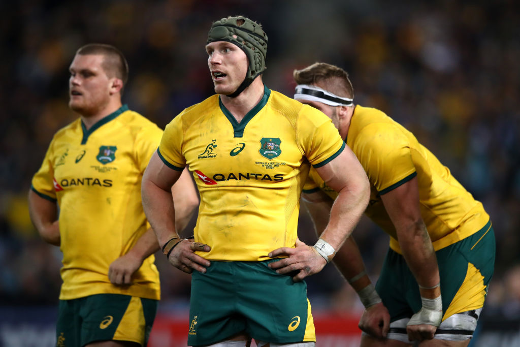 Former All Black Jeff Wilson has questioned the Wallabies' fitness after last weekend's loss in...