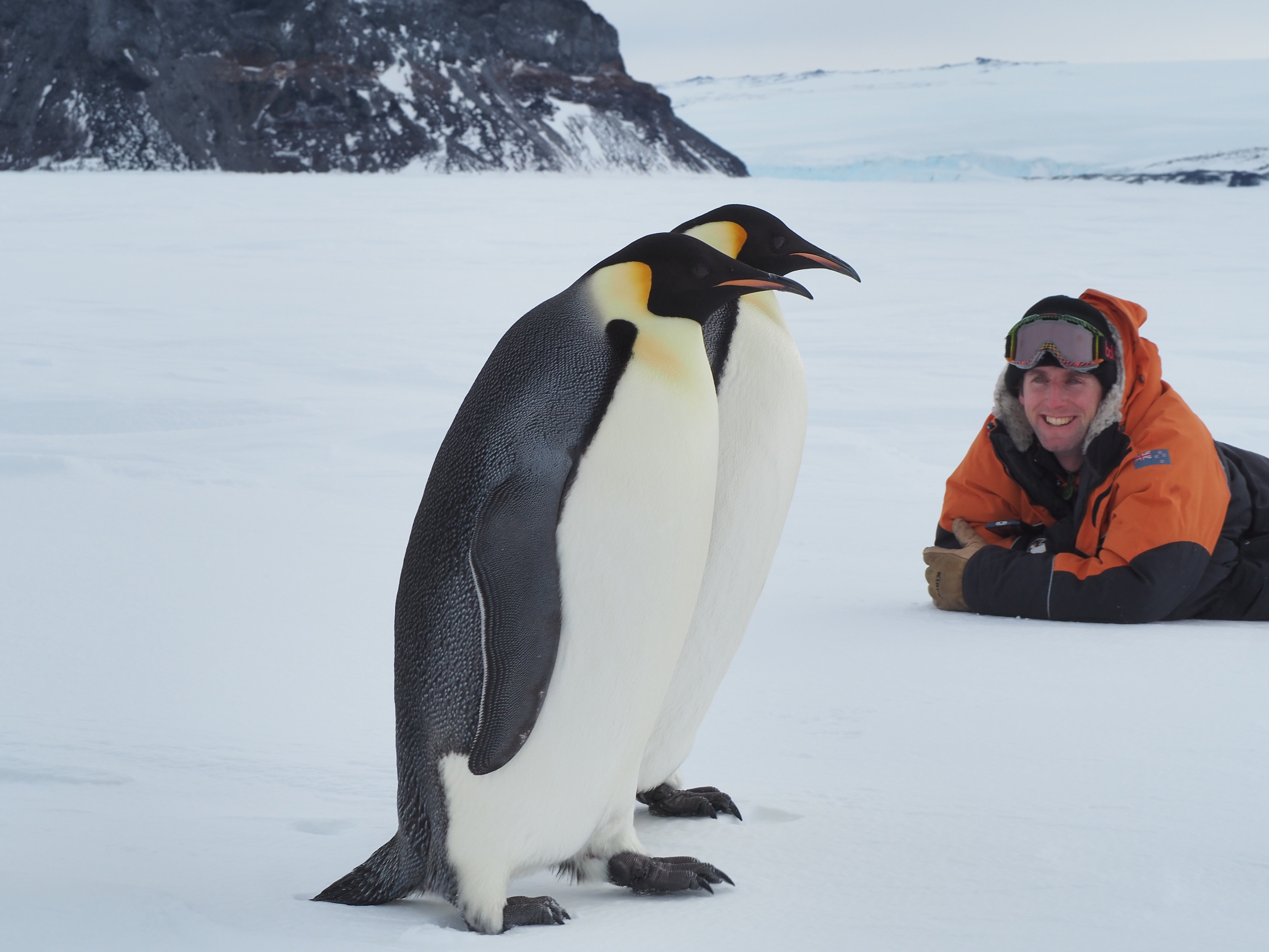 Chris Long with  emperor penguins in the Antarctic. Photo: Supplied