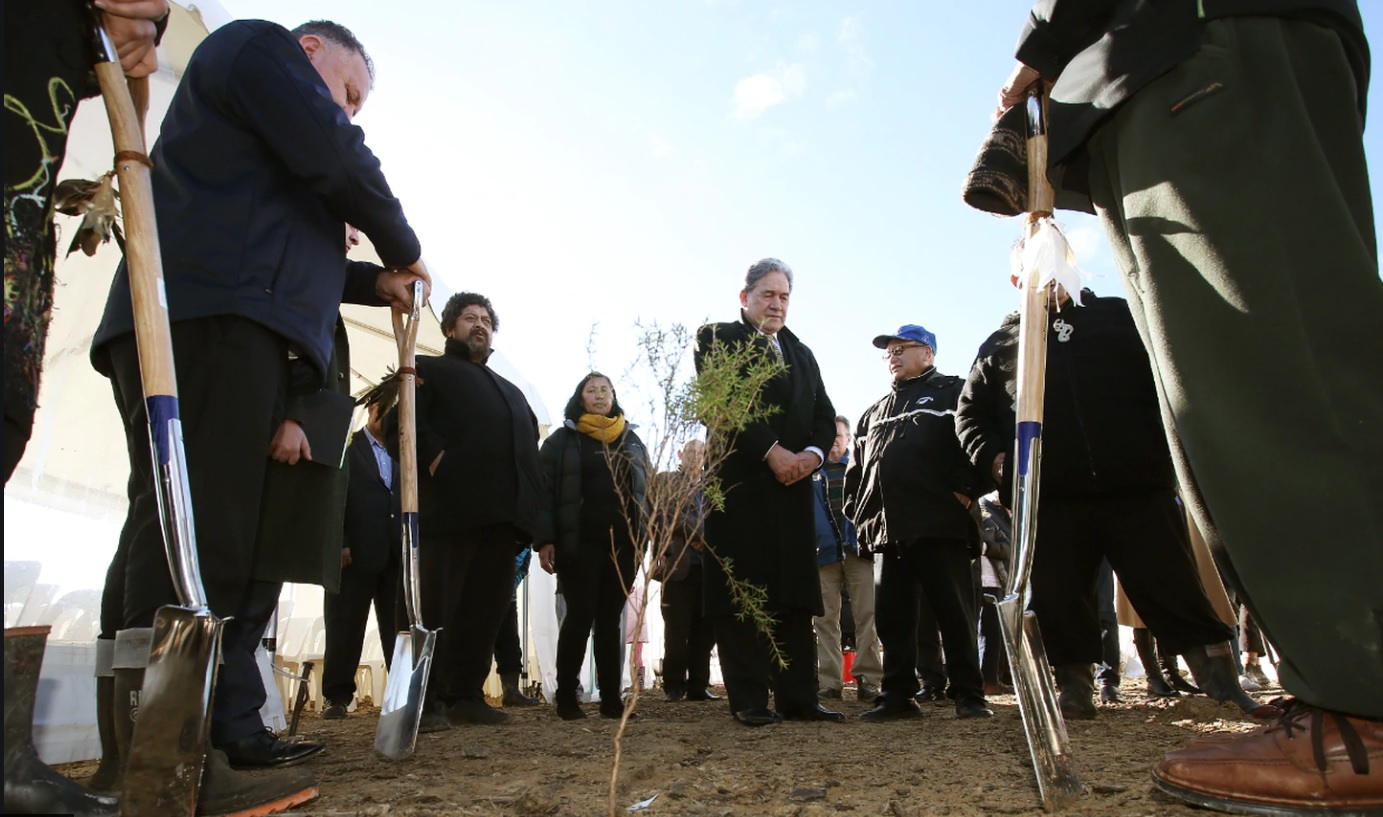 The first tree of the Government's One Billion Trees programme was planted at Pukeatua, in remote...
