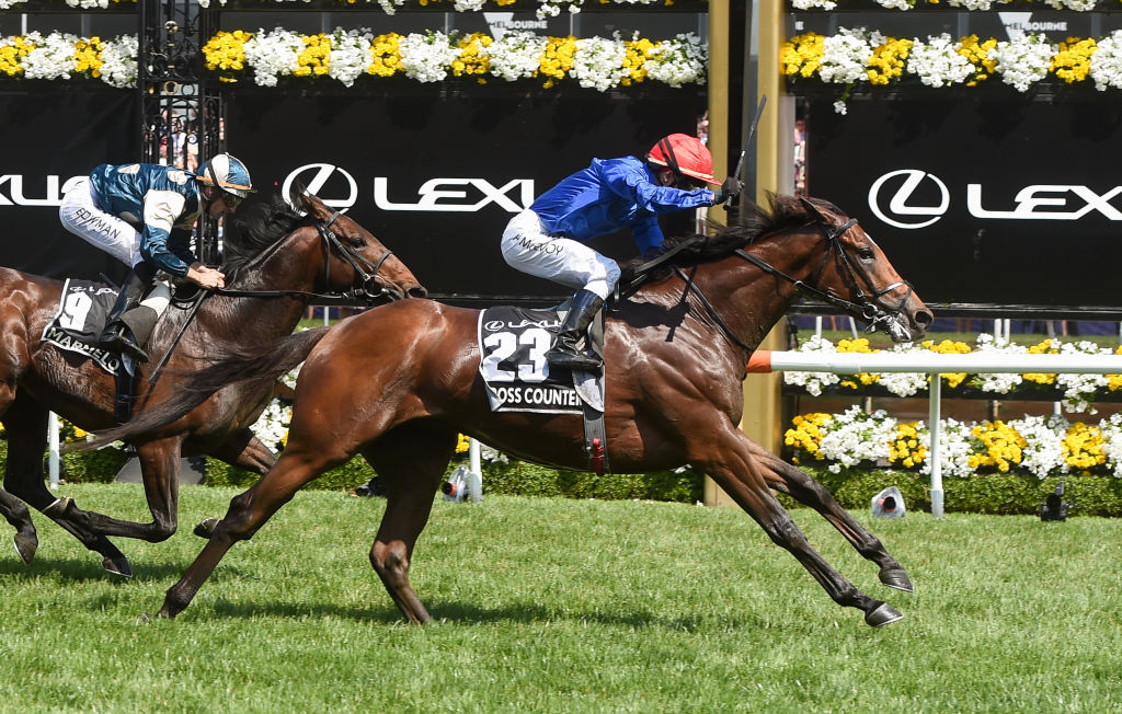 Cross Counter, ridden by Kerrin McEvoy, wins the Melbourne Cup at Flemington Racecourse. Photo:...
