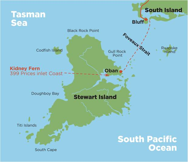 Map showing the location of the cottage on Stewart Island. Image: Supplied