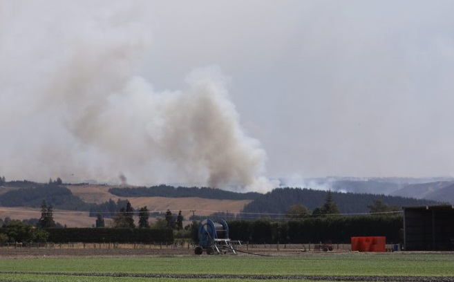 Smoke rises from the bushfire area at Pigeon Valley. Photo: RNZ