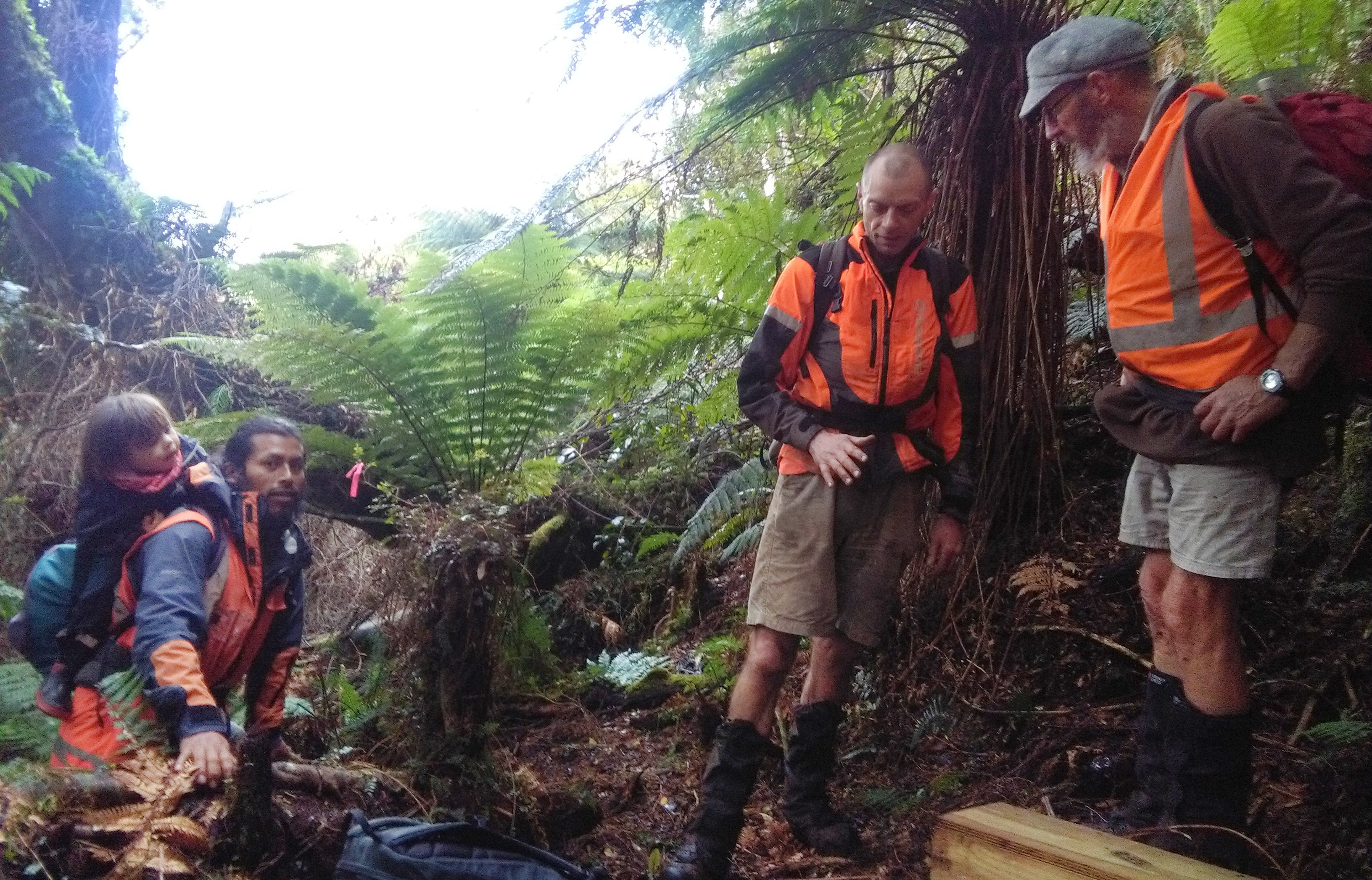 Marking a new trap line in the Tautuku Forest in the Catlins are Tautuku Restoration Project volunteers from left) Jorge Jimenez and son Niko (2), Gavin White. and Roy Johnstone. Photo: Supplied
