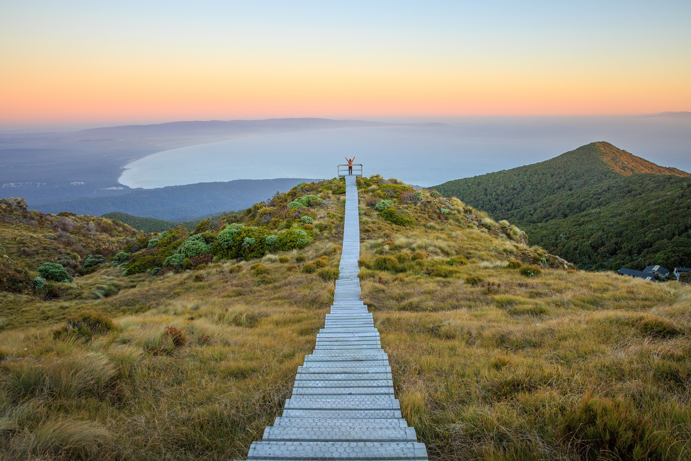 A lookout on the Hump Ridge Track. Photo: Department of Conservation