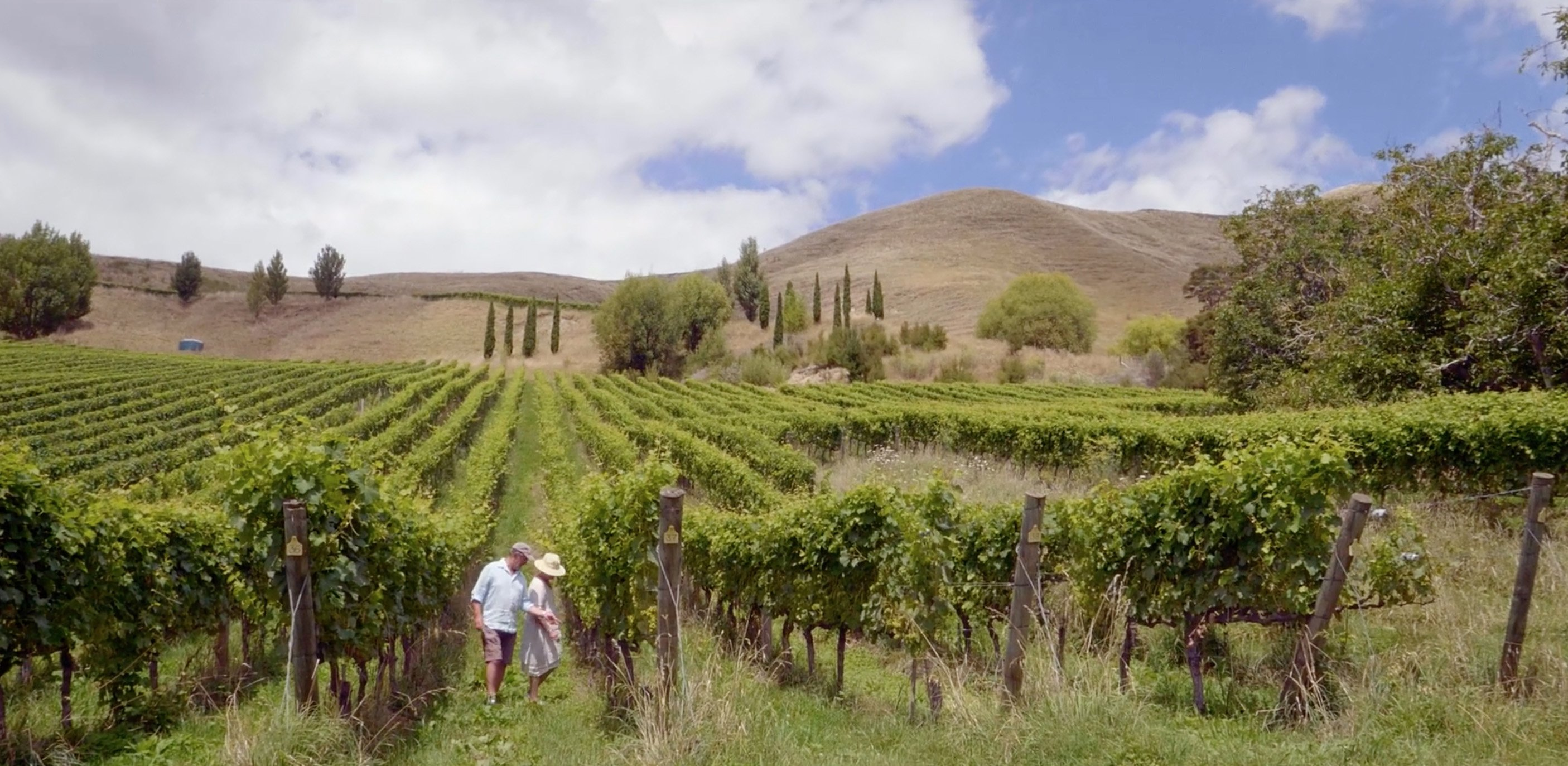 James and Annie Milton check the grapes on their biodynamic vineyard in Gisborne.
