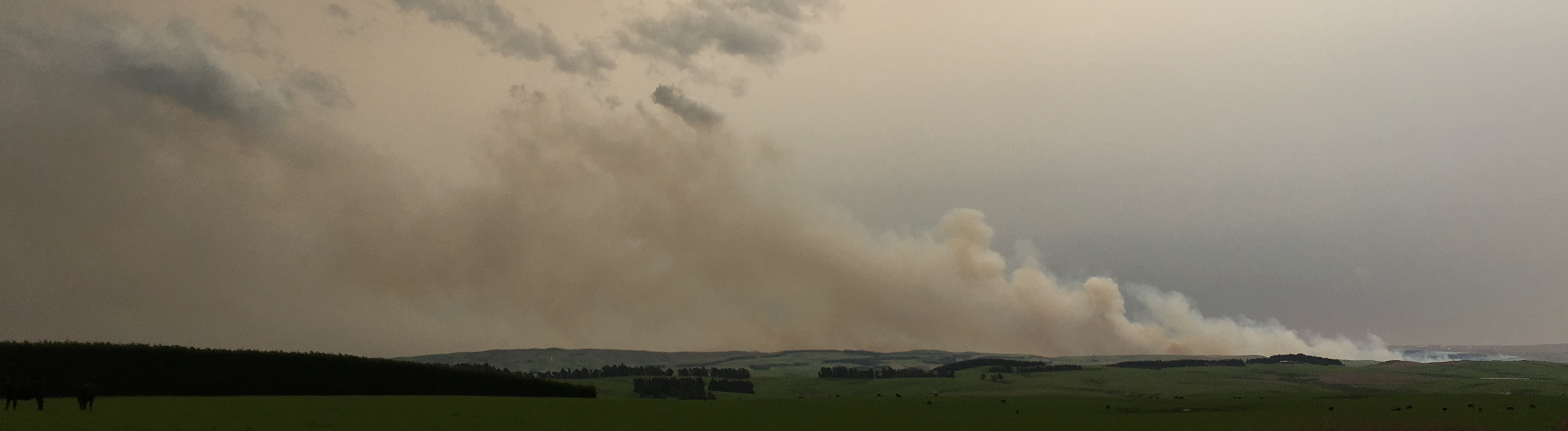 The fire began about 11am and has burned through about 400ha of remote tussock and scrub. Photo:...