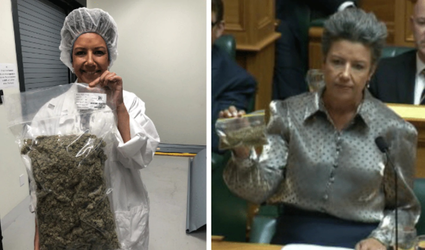 Winston Peters used an internet meme to mock MP Paula Bennett during Question Time. Photo:...