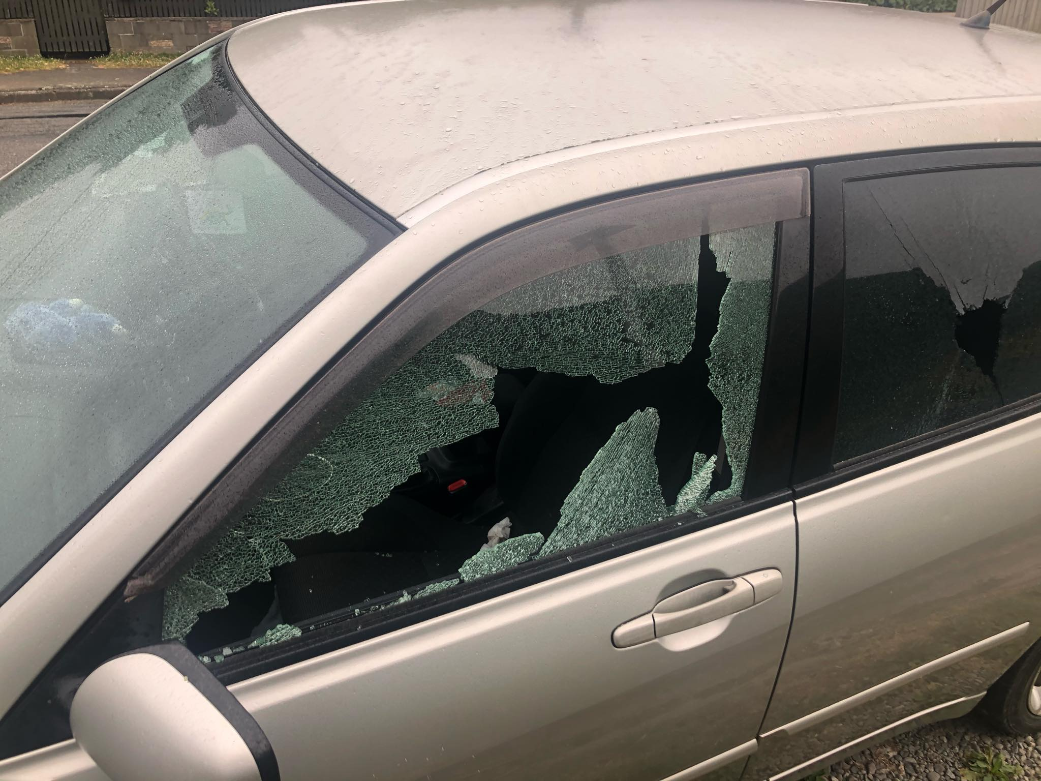 Warden St resident Lilly Van't Wout was shocked to discover almost every window in her car had...