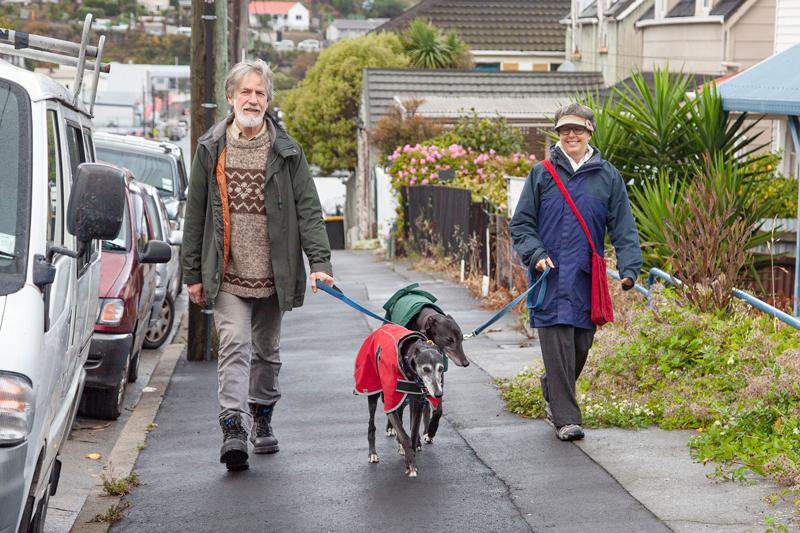 Walking the greyhounds on London St, Lyttelton.