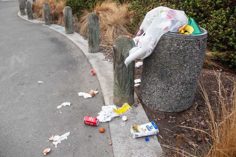 Rubbish bin overflowing with household rubbish near the Waimairi beach surf club, New Brighton.