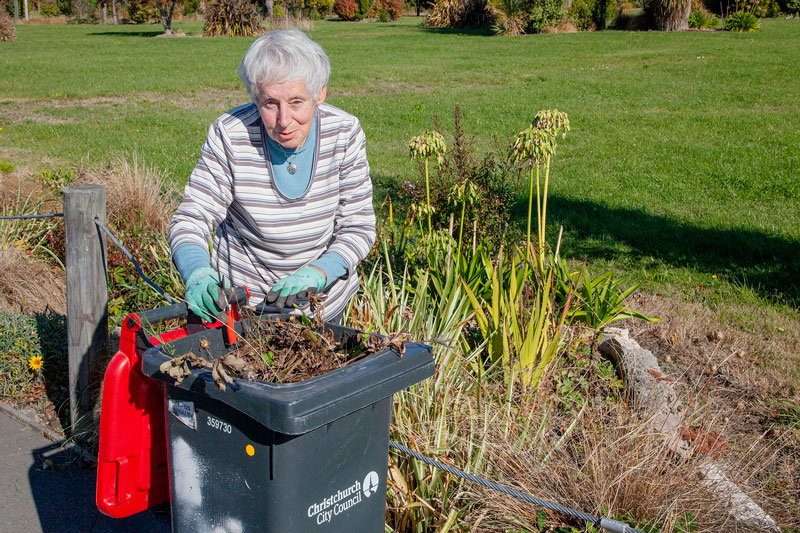 Avondale Rd resident Ngaire Garrick is using her spare time to voluntarily clean up and keep...