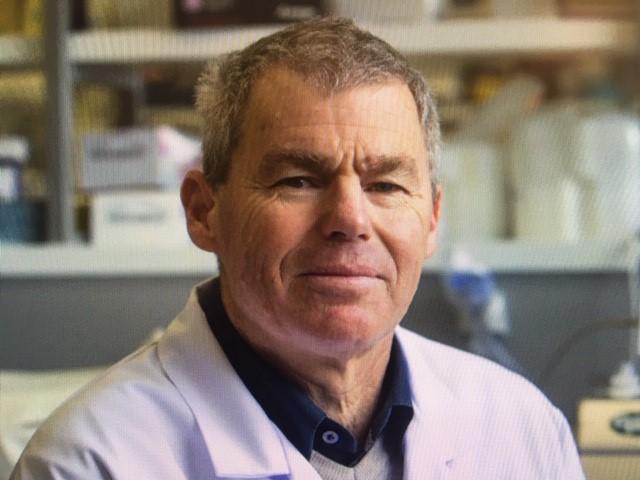Prof Graham Le Gros. Photo: NZ Herald