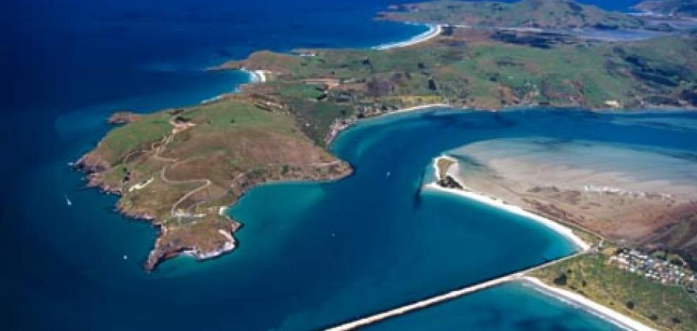 Otago Peninsula offers many attractions for people of all ages. Photo: ODT files