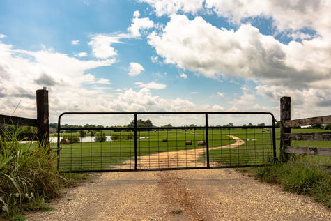 Thefts of farm gates and fencing in the Selwyn district are on the rise with seven incidents over...