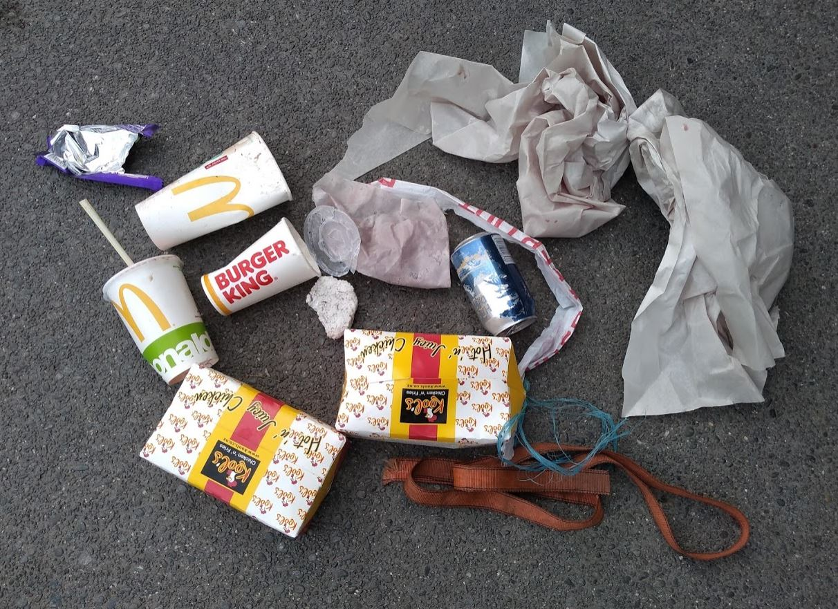 A collection of rubbish found by Springston resident Gail Route on a bike ride recently. Photo:...