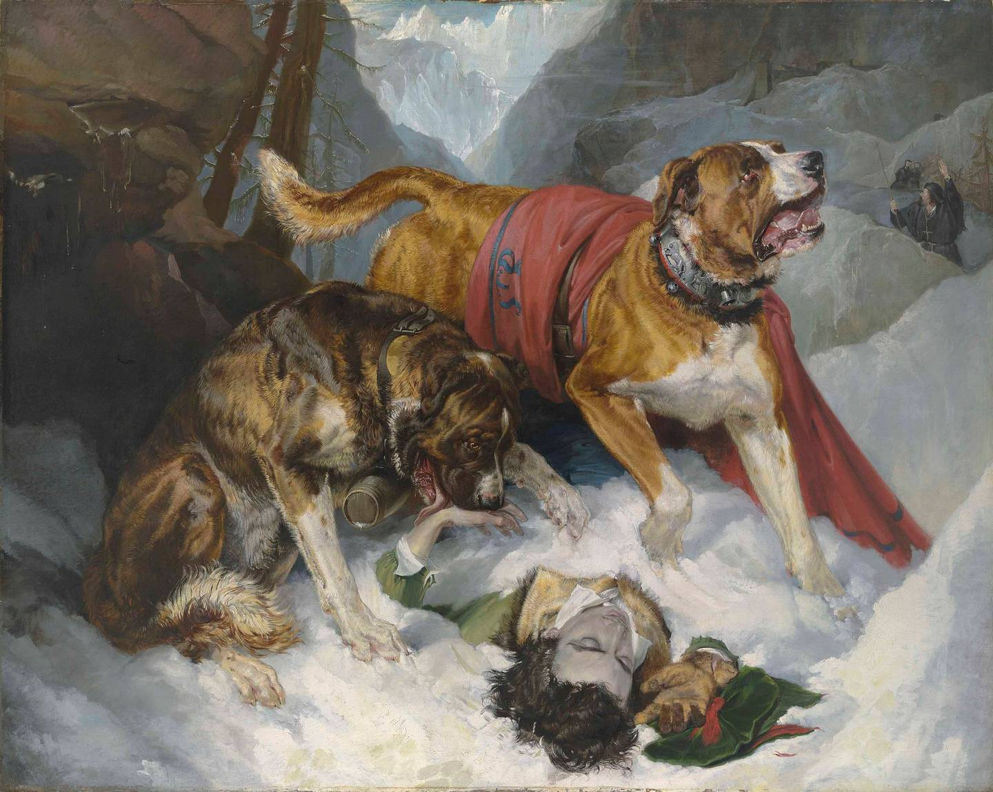 St Bernards were bred to conduct alpine rescue missions, carrying brandy and blankets. Photo: Sir...