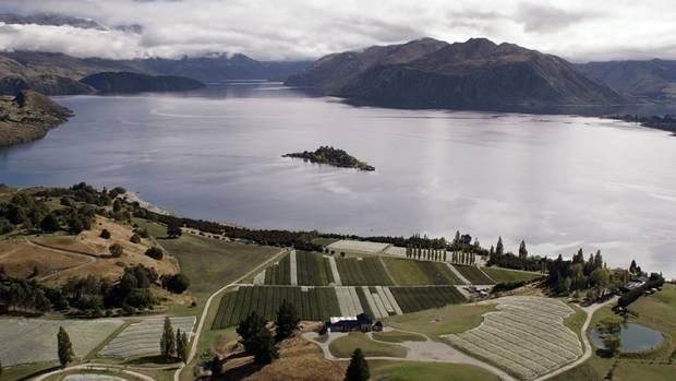 Rippon vineyard on the shores of Lake Wanaka. Photo: NZ Herald/File