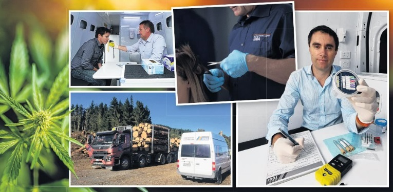 Various types of testing being carried out by the TDDA's staff including hair and urine samples. They also make random visits to work sites, as can be seenby the TDDAvan at the forestry site. PHOTOS: SUPPLIED
