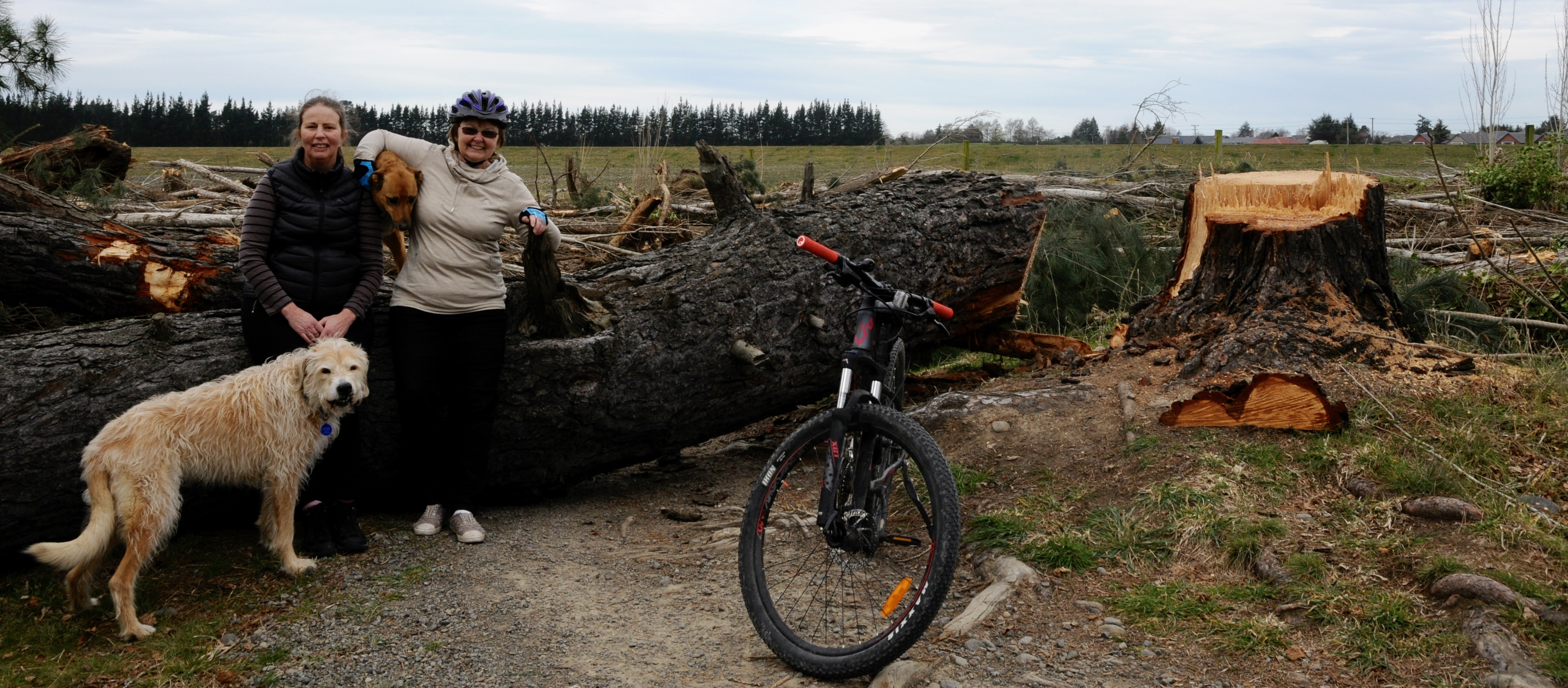 Alison Clay, left, of Rangiora, with her dog Jafa, and Bernadette Canavan, of Rangiora, with...