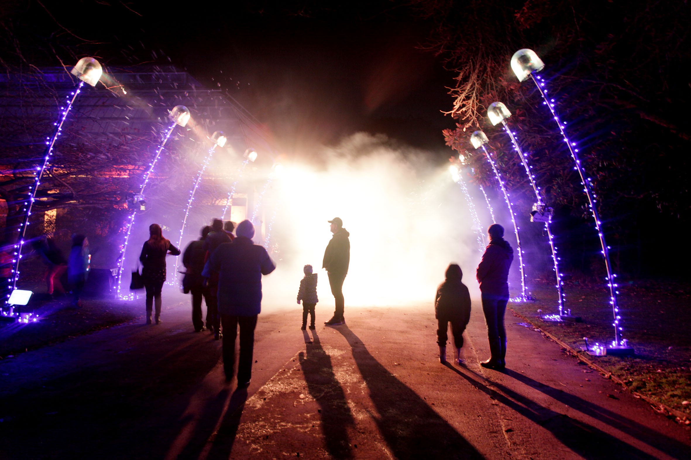 The Rangiora Light and Sound Festival hopes to build on the success of Christchurch's Botanic D...