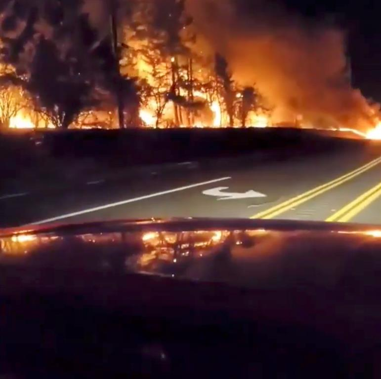 Vegetation is seen on fire along a roadside in Molalla, Oregon in this still from a social media...