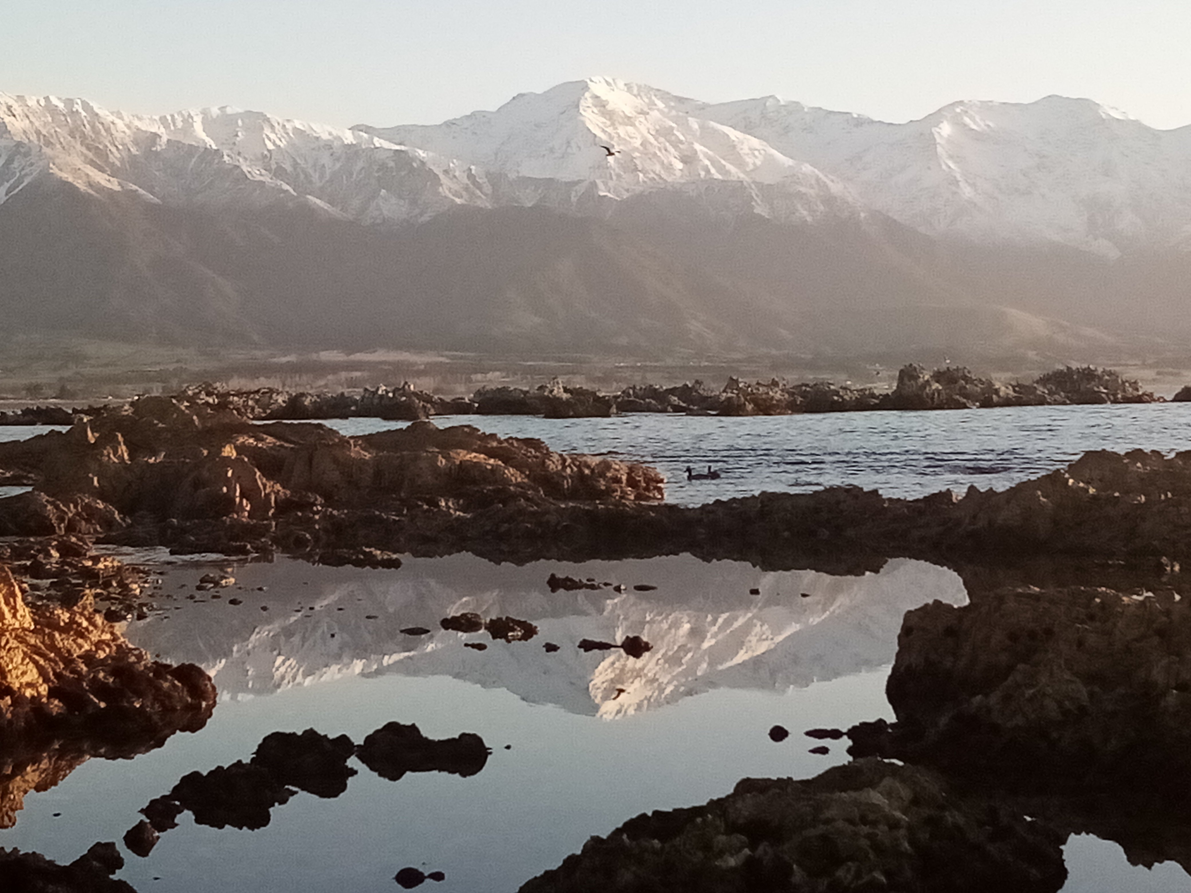 The Kaikoura Ranges are reflected  in a pool of water near the seal colony.  PHOTOS: SUE NOBLE-ADAMS
