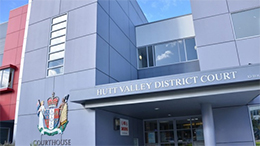 The woman appeared at the Hutt Valey District Court today. Photo: justice.govt.nz