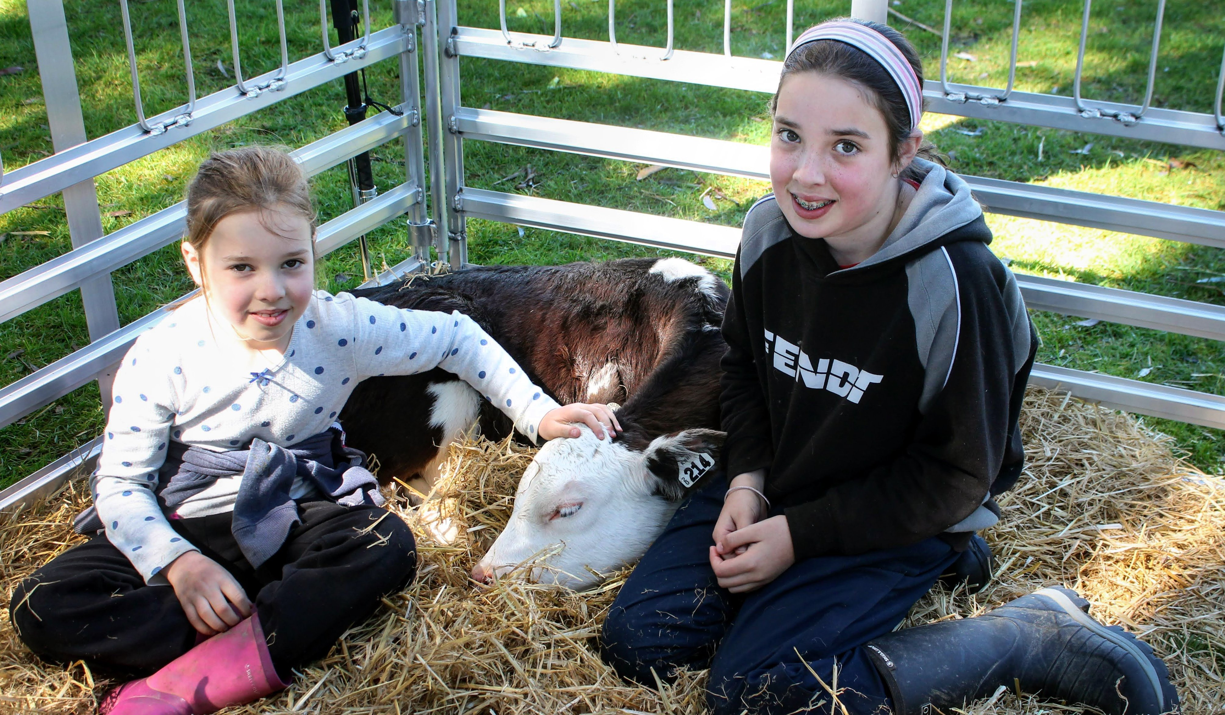 Hannah (7) and Charlotte (11) Hunt cuddle Willow, their pet calf.