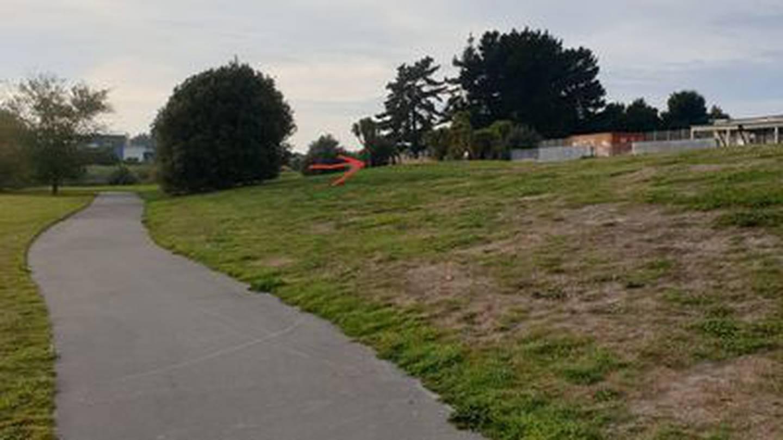 Arthur Adcock Memorial Reserve. Photo: Supplied via NZH