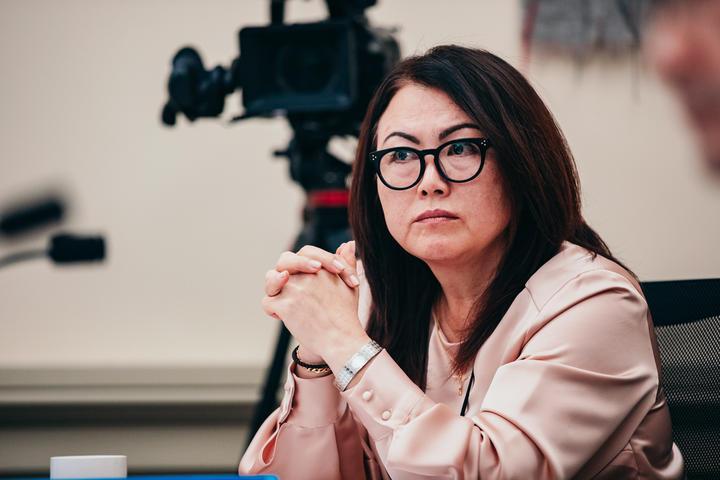 National MP Melissa Lee. Photo: RNZ
