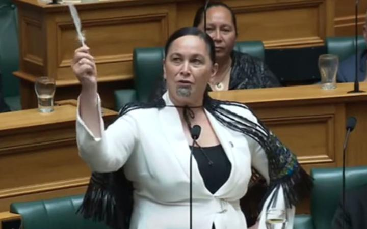 Debbie Ngarewa-Packer said parliament must not forget the impact of racist legislation. Image: NZ...